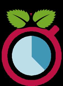 RealtimePi logo
